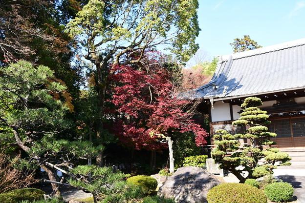 西方寺庭園