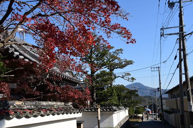 紅葉と比叡山