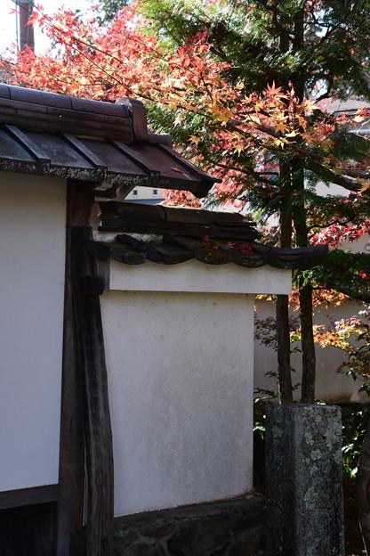 西方寺の紅葉