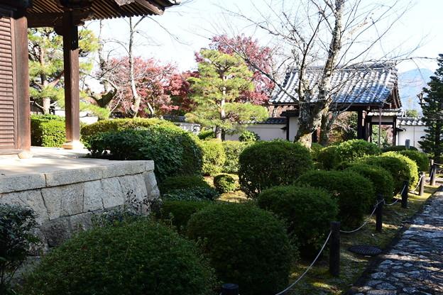 一様院庭園