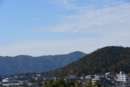 仁和寺の塔が見えます