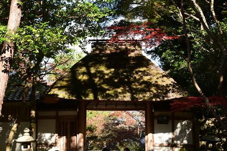 山門を飾る紅葉