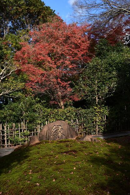 安楽寺の紅葉景色