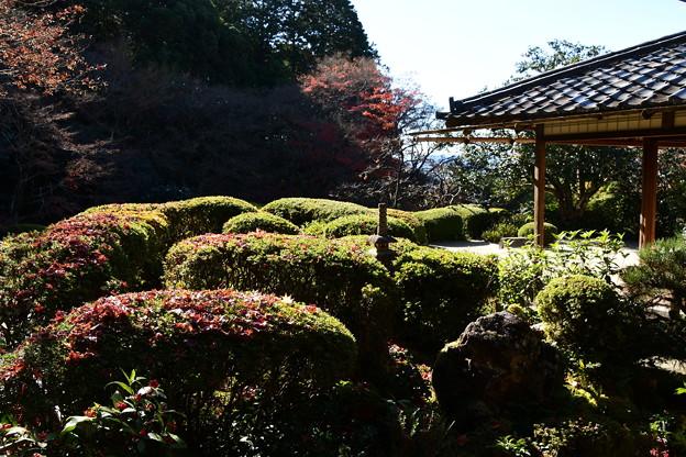 散り紅葉の詩仙堂