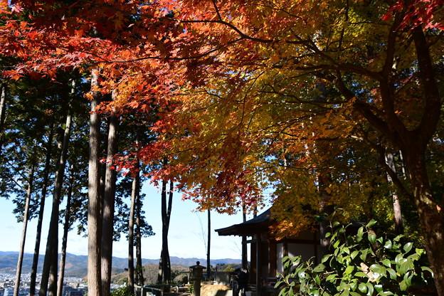 東照宮を彩る紅葉