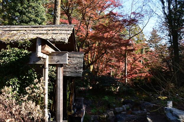 水車小屋と紅葉