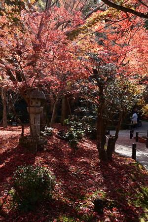 石塔を囲む紅葉