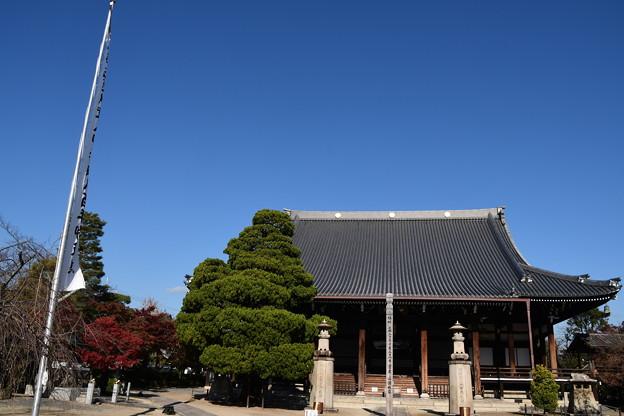 妙顕寺の青空