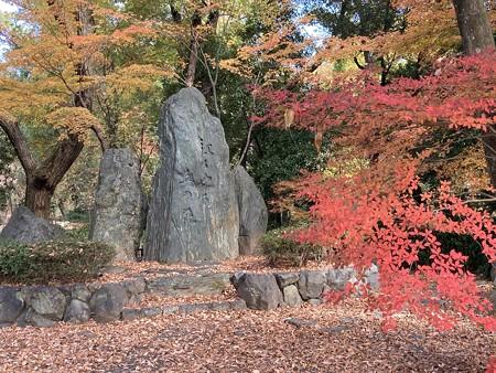 くれない燃ゆるの碑を囲む紅葉