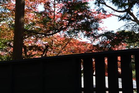 赤く染まる泉川邸