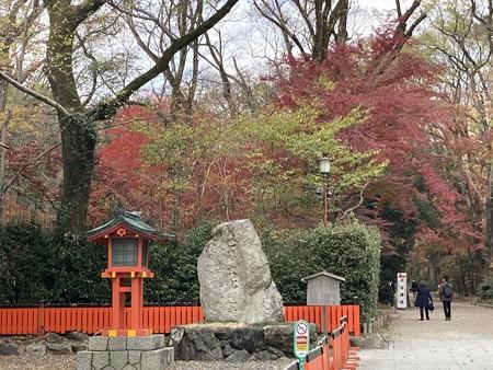 色づき進む下鴨神社
