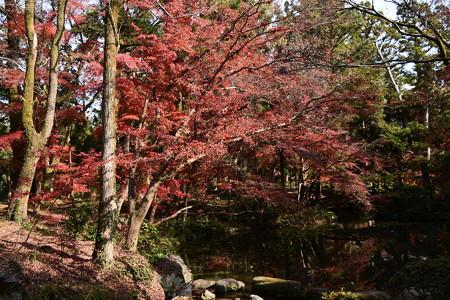 赤く染まる池脇