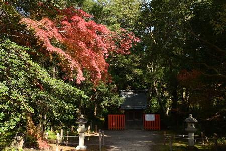 半木神社(なからぎじんじゃ)の紅葉