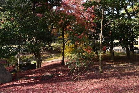 紅葉の閑院宮邸跡