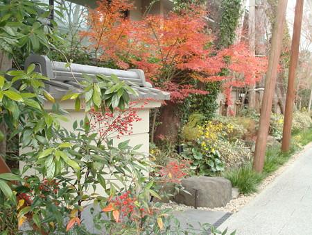 紅葉と石蕗と南天
