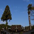Photos: 冬空の三光門