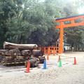 Photos: 焚き火の準備