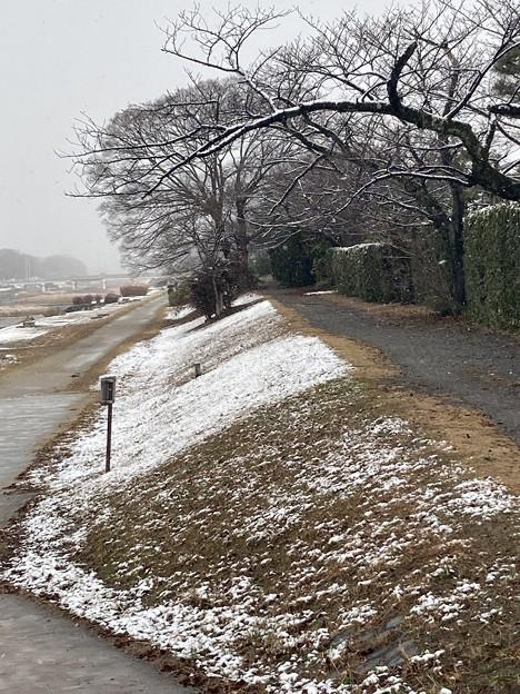 うっすら雪の賀茂川