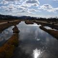 Photos: 元日の賀茂川