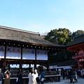 Photos: 1月2日の下鴨神社