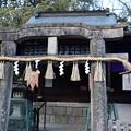 Photos: 厳島神社