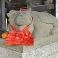 Photos: 手水脇の牛さん