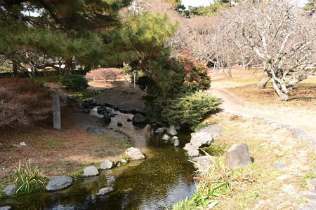春を待つ出水の小川