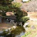 Photos: 春を待つ出水の小川