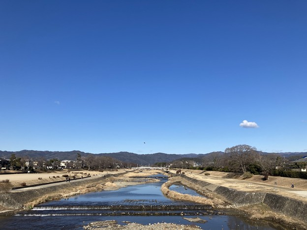 Photos: 冬晴れの賀茂川