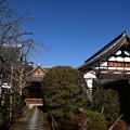 Photos: 冬の天寧寺
