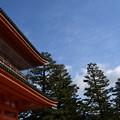 Photos: 冬の雲