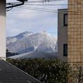 Photos: 雪の水井山と横高山