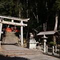 Photos: 八神社