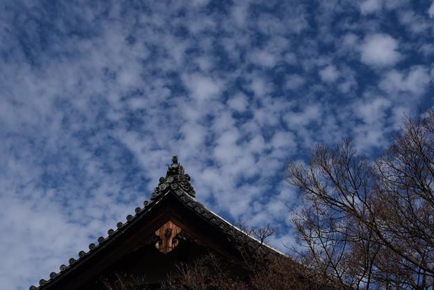 本坊上空の雲