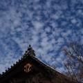 Photos: 本坊上空の雲