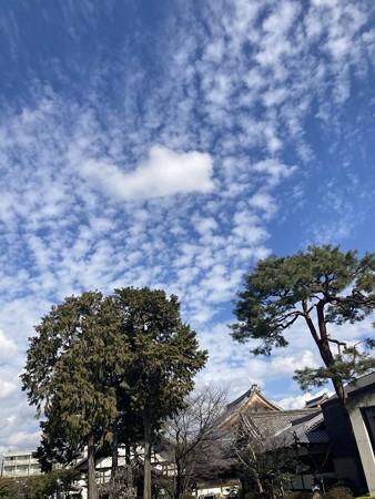 白雲沸き立つ