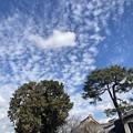Photos: 白雲沸き立つ