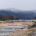 Photos: 小雪舞う北山