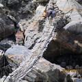 写真: 100.つり橋を渡るロバ