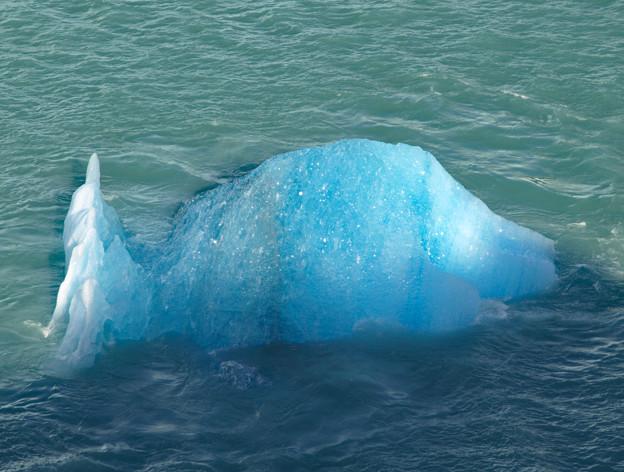 124.漂う青氷