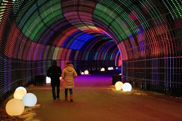 神戸ネスタリゾート1 「寒い夜」