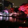 Photos: 旧芝離宮庭園