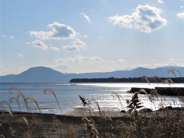 Photos: 高崎山_3075