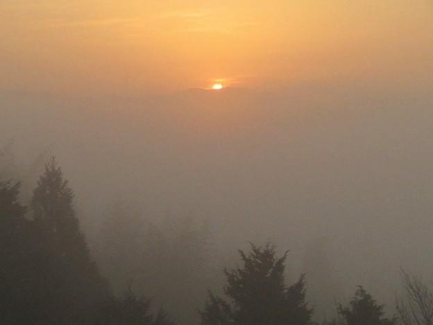 朝霧日の出_3680