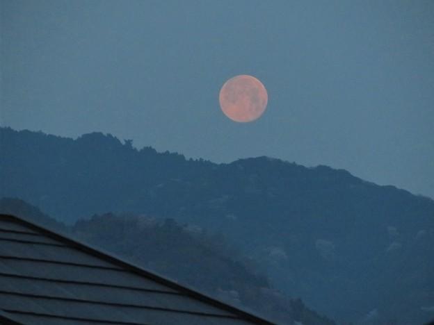 朝の満月_5453