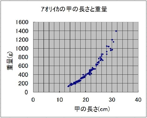 アオリイカ重量データ
