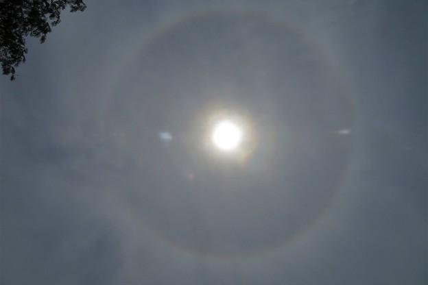 日暈_4793