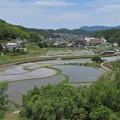 Photos: 田園風景_4934