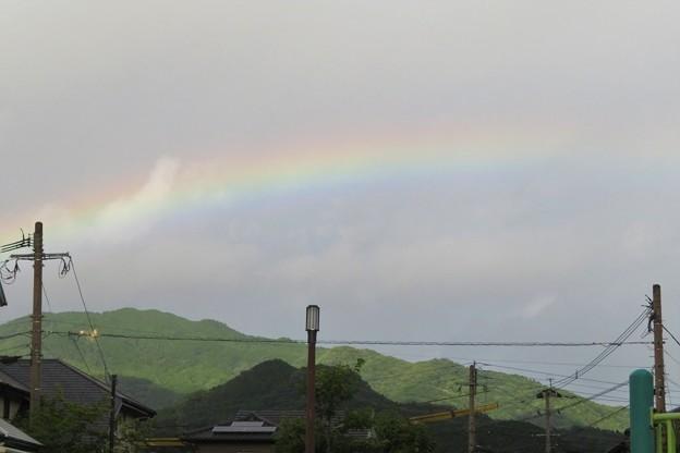 朝の虹_6572