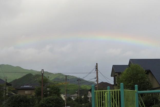 朝の虹_6576